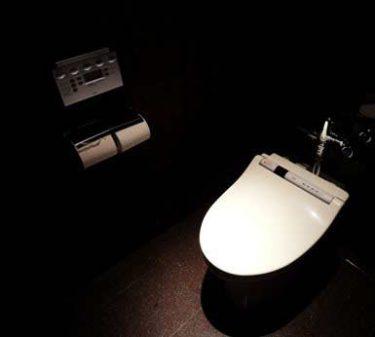 「オシッコ姿みたでしょ?」変態女子と一緒にトイレに入った体験