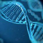 出産7 DNA親子鑑定結果を発表。俺が「生物学上親子である可能性」